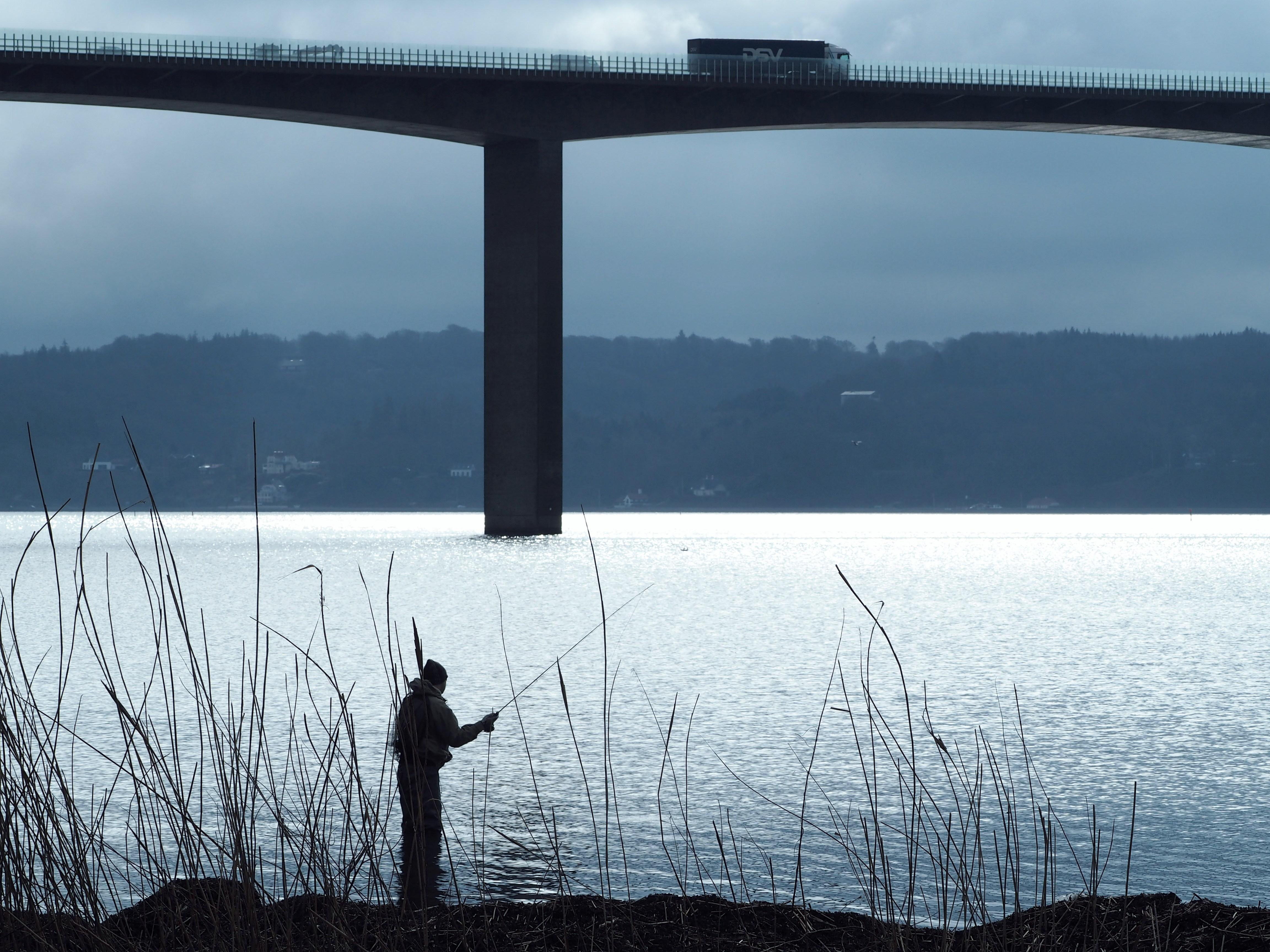fisker_ved_bro.jpg