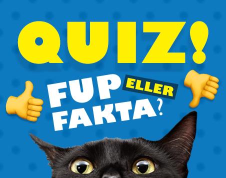 quiz_fup-eller-fakta_big-spot.jpg