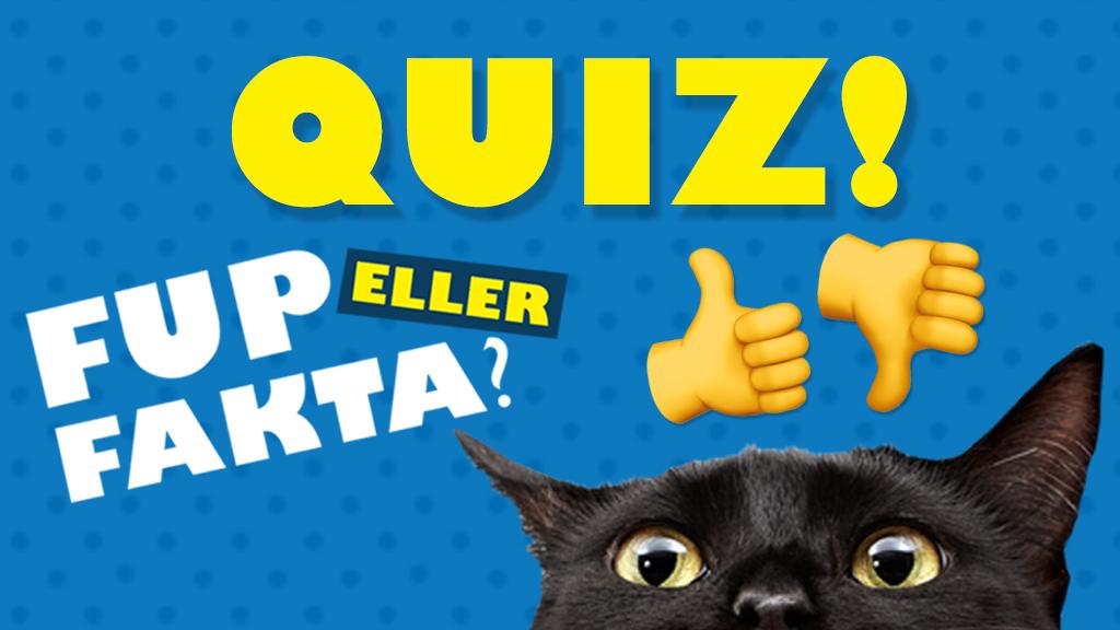 quiz_fup-eller-fakta_tv-spot.jpg