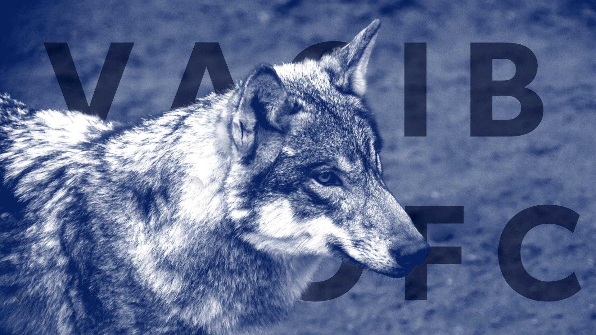 ulv-partier.jpg