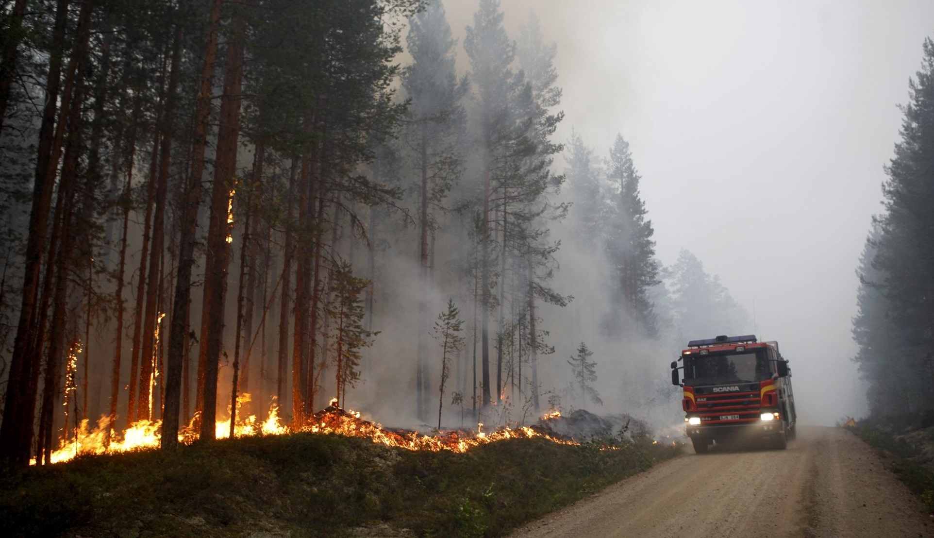 skovbrande_sverige.jpg