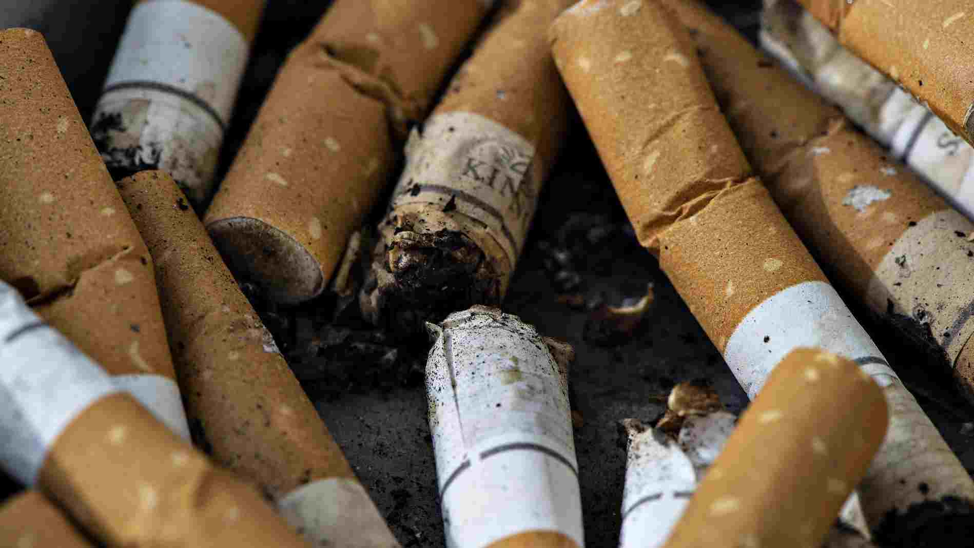 ryge.jpg