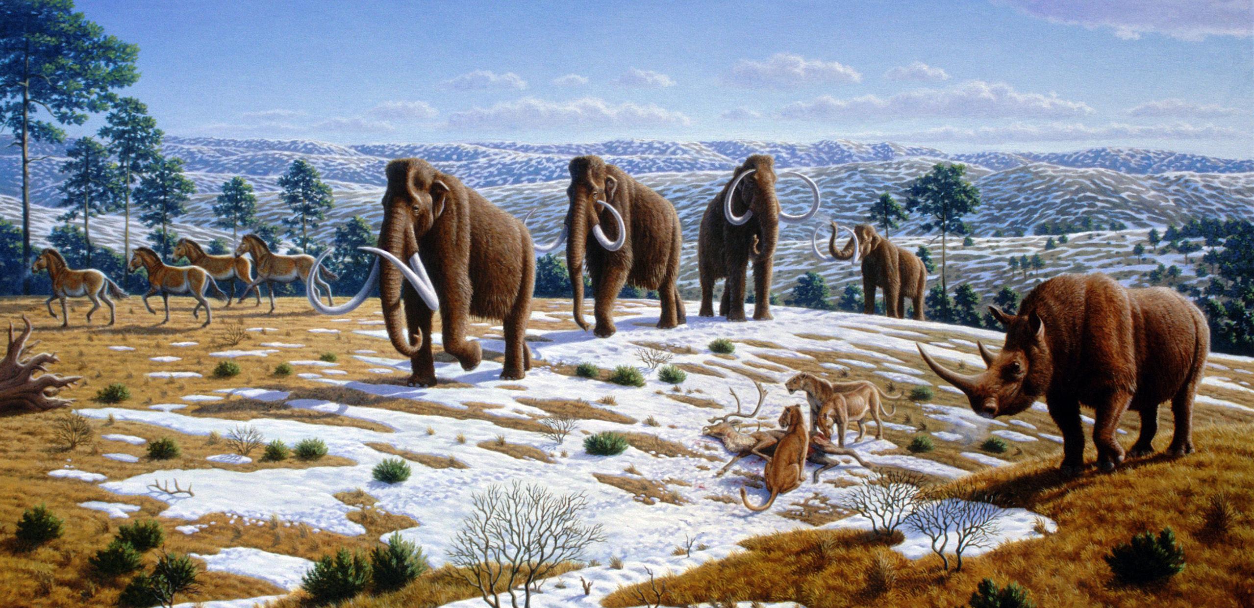 ice_age_fauna_of_northern_spain_-_mauricio_anton.jpg