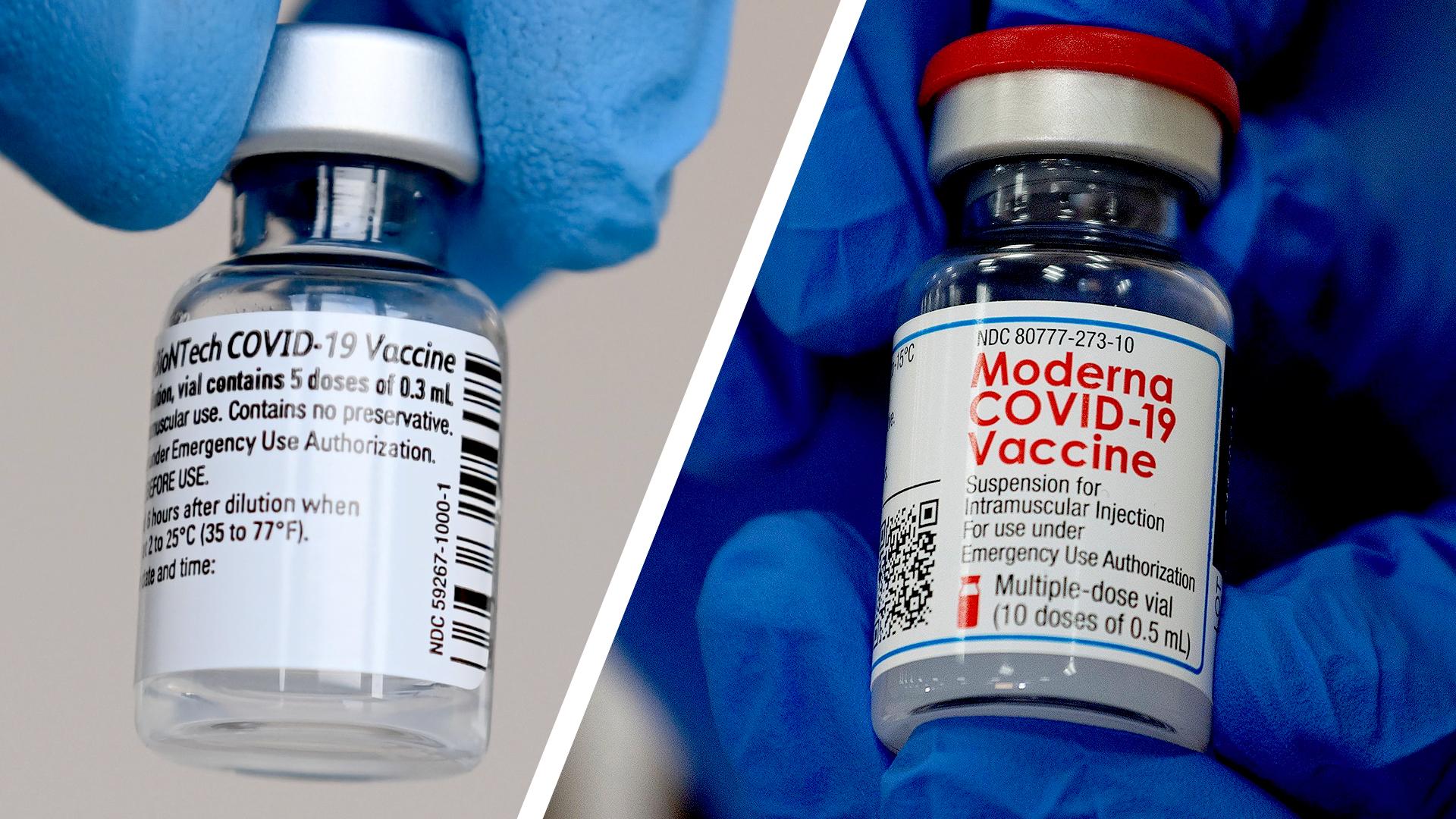 vaccineforskelle.jpg